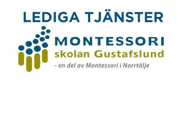 Studentët në Norrtälje grabitën nga shpërndarës të rremë  gazetash